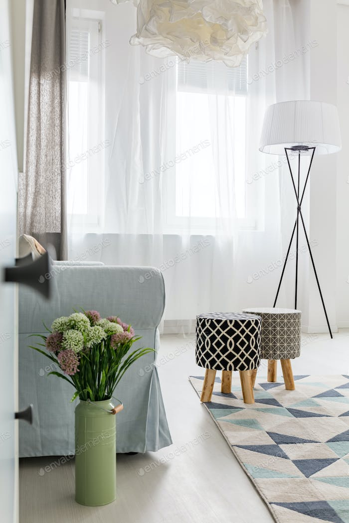 Light room with patterned carpet
