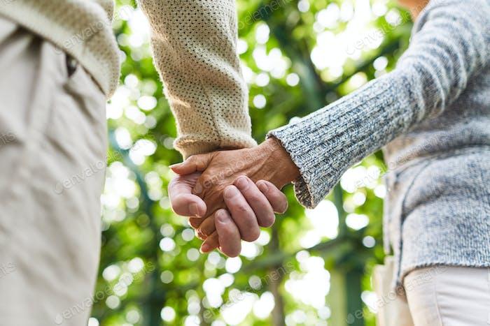 Affection of seniors