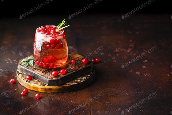 Rote Nymphensittil mit Eis, Cranberry und Rosmarin auf dem dunklen Hintergrund