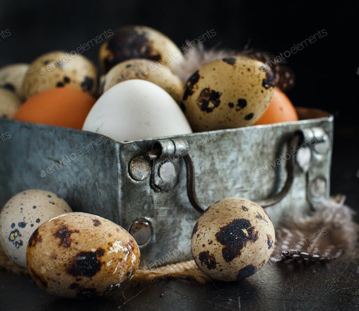 Сhicken and quail eggs in a box