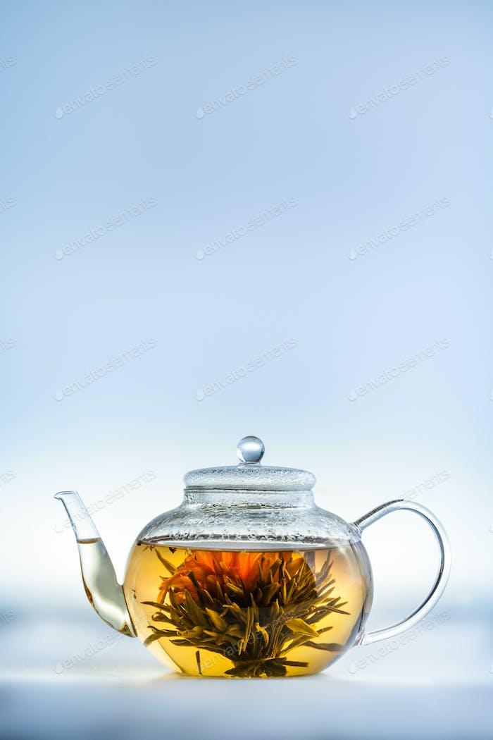 Tea Flower in a Clear Teapot