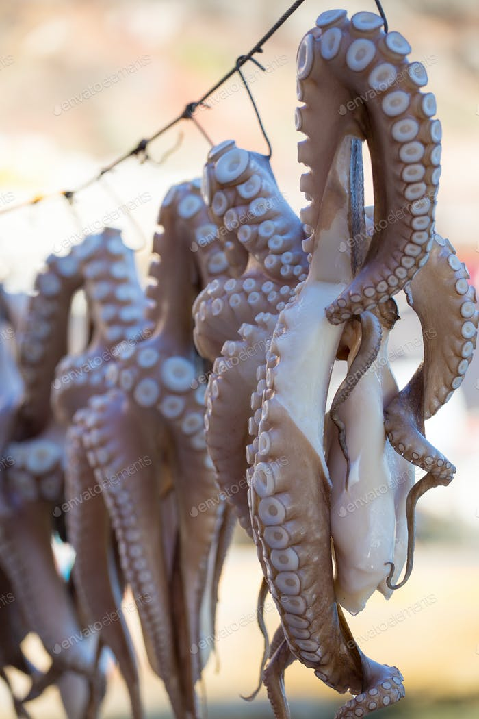 Oregano-rubbed octopus tentacles drying in the sun outside
