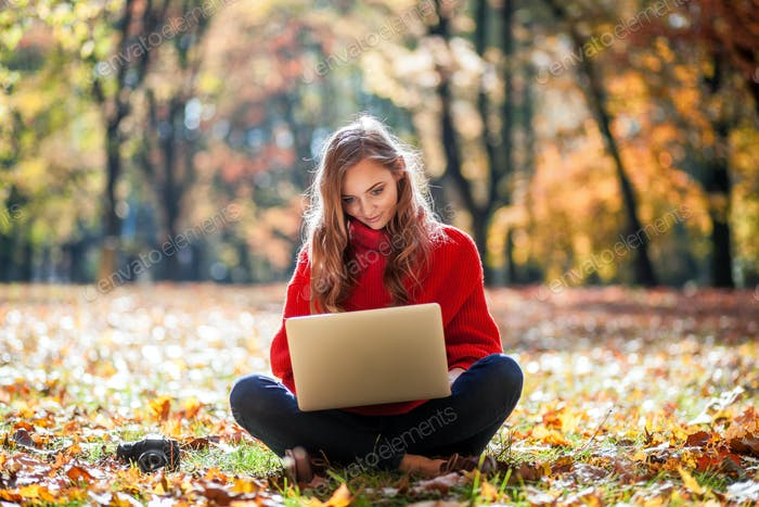 Beautiful woman using laptop and camera outdoor sitting on lawn