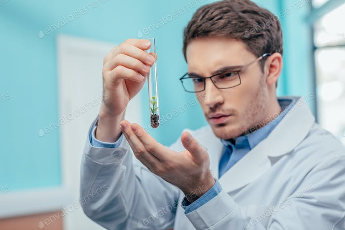 male biologist working with plant in flask in chemical lab