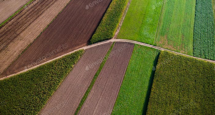 Agricultural Fields From Aerial Drone View. Colorful Pattern