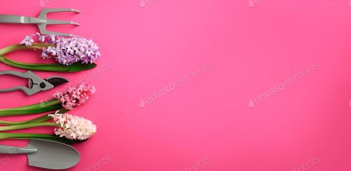 Gartenschere, Rechen, mit Blumen auf rosa, Punchy-Pastell-Hintergrund. Banner mit Kopierraum. Frühling