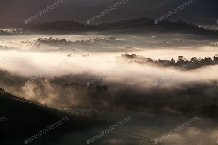 Yarra Valley View