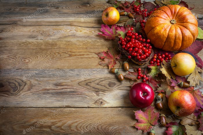 Thanksgiving  greeting background with orange pumpkins, apples a