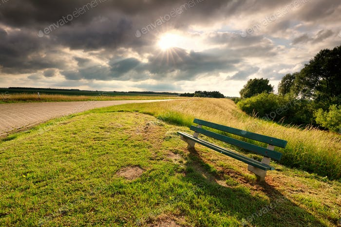 sunshine over road and wooden bench