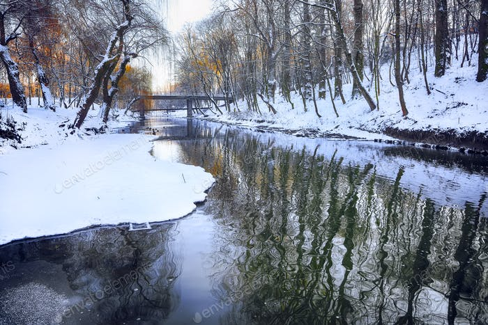 Scenic view of the river and trees in winter