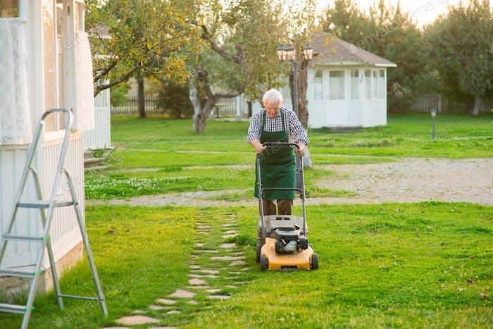 Elderly man mowing lawn