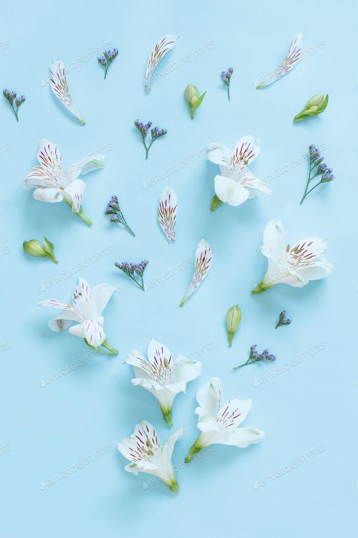 Blumen auf einem hellblauen Hintergrund