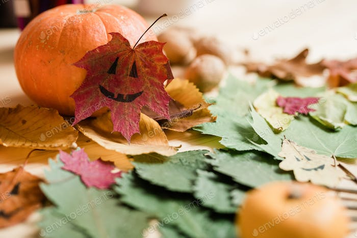 Dry colorful autumn foliage, big ripe pumpkin and drawn faces on leaves