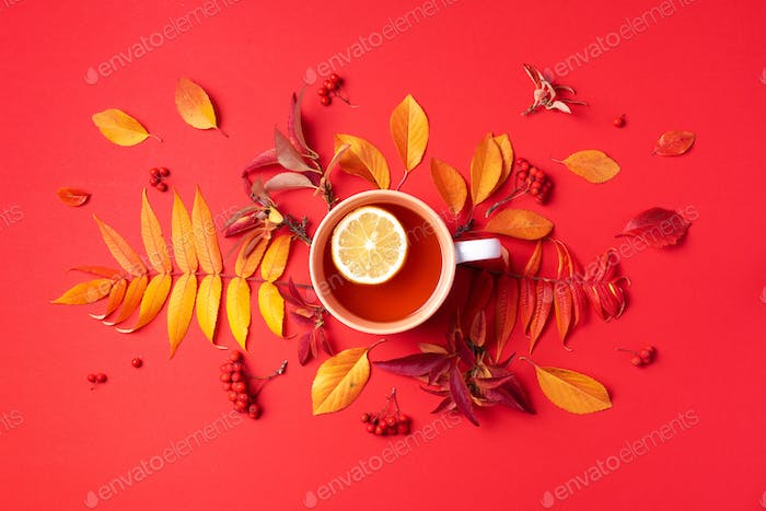 Autumn flat lay composition. Cup of tea, autumn bright leaves on red background. Top view. Flat lay