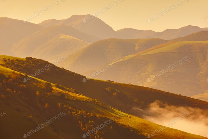 Golden wavy meadows landscape at sunset in Asturias. Travel Spain