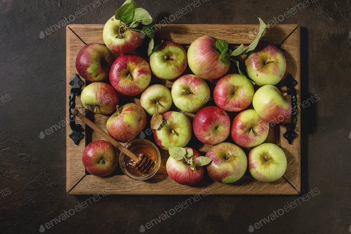 Ripe gardening apples