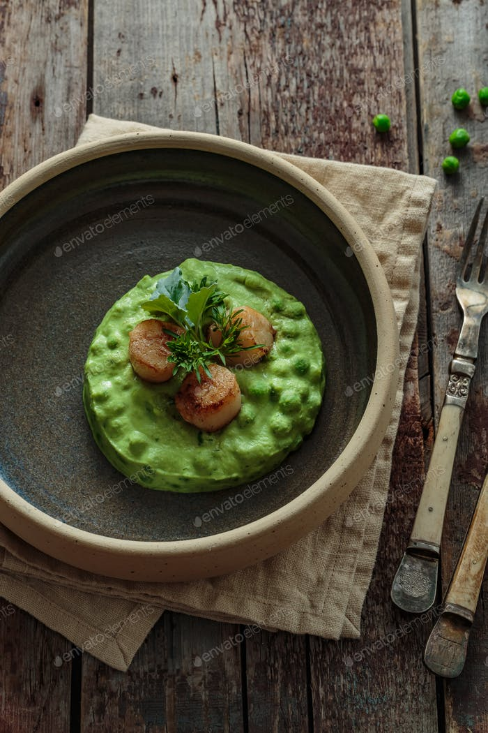 Seared Scallops with pea puree on a plate close view