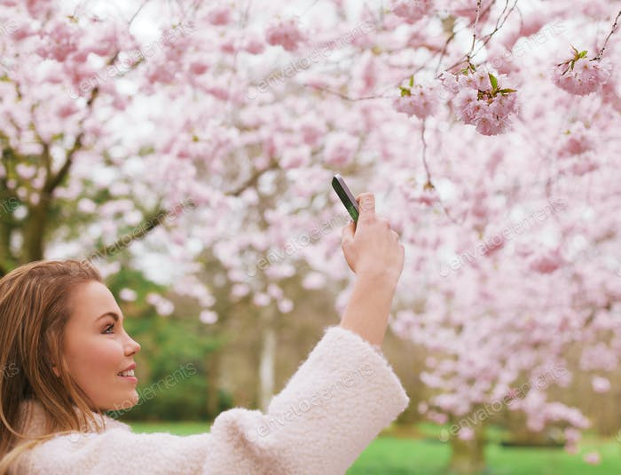 Beautiful female shooting blossom flowers with her mobile phone