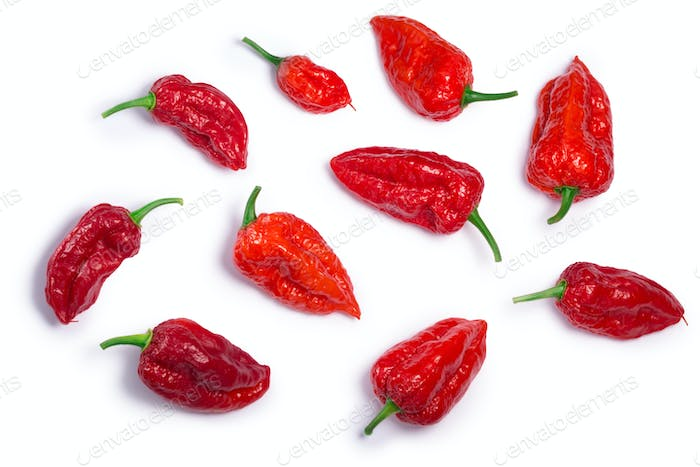 Bhut Jolika ghost peppers, paths, top view