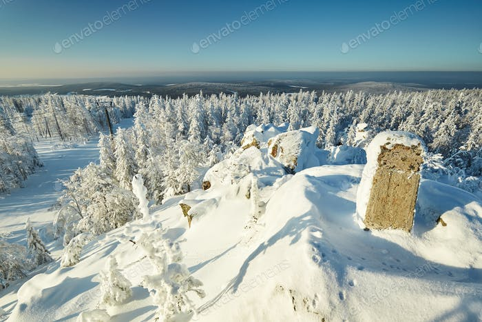 Fairy winter landscape with snow covered trees