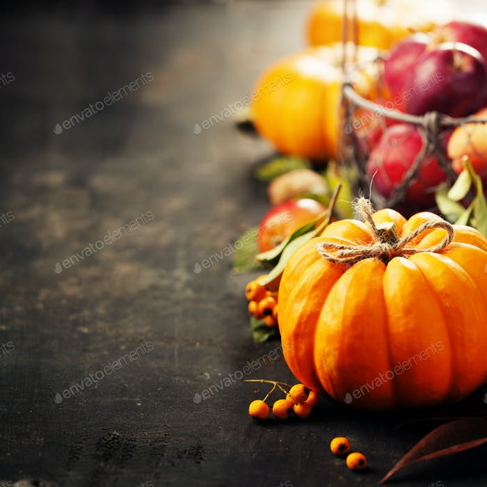 Rustic fall greeting card background with pumpkins, berries, apples