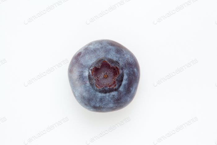 Blueberry against a white background