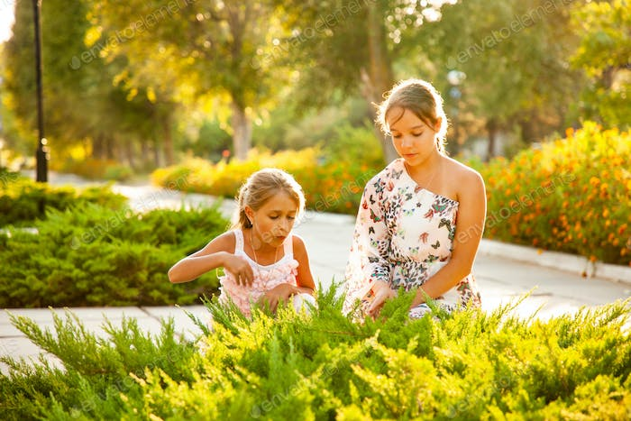 Two sisters looking at a green bush and enjoying a sunny day in the park