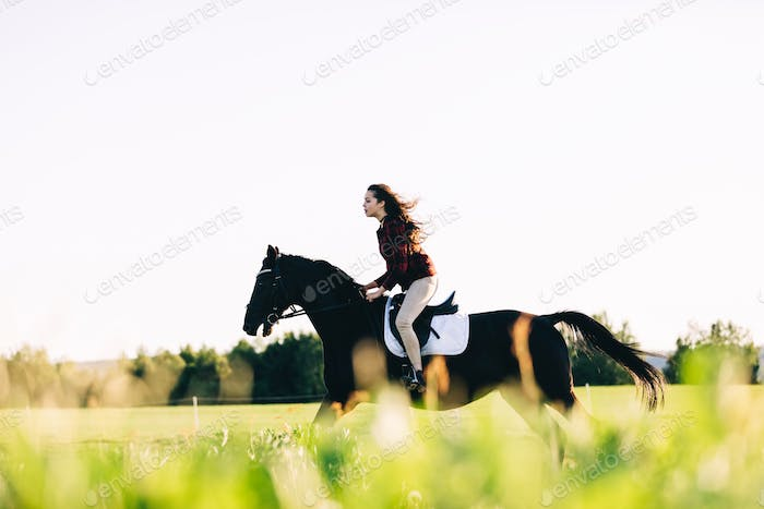 Girl storming through the field on a bay horse