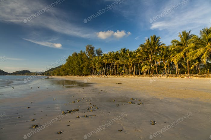 Beautiful tropical beach with coconut palms. Koh Chang. Thailand