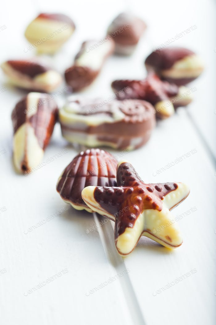 Sweet chocolate seashells.