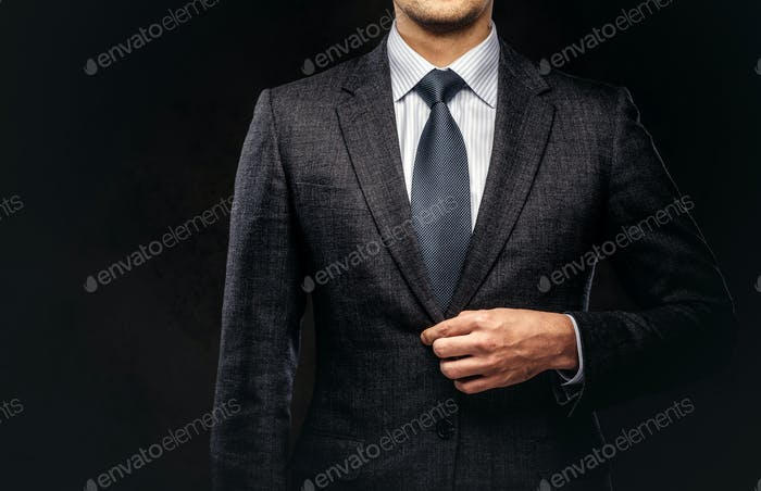 Cropped portrait of a successful businessman dressed in an elegant formal suit.