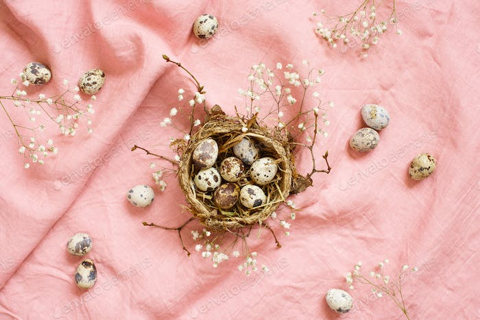 Quail Eggs in the Nest and Flowers, Easter Tender Composition