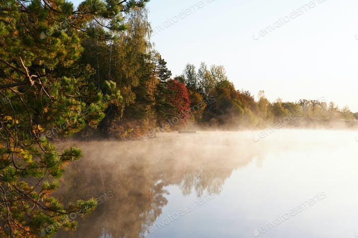 River in autumn woods with steam in daytime