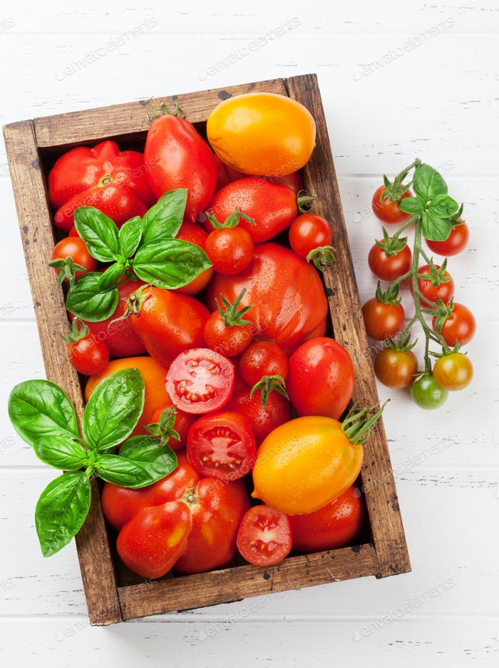 Fresh garden tomatoes and basil