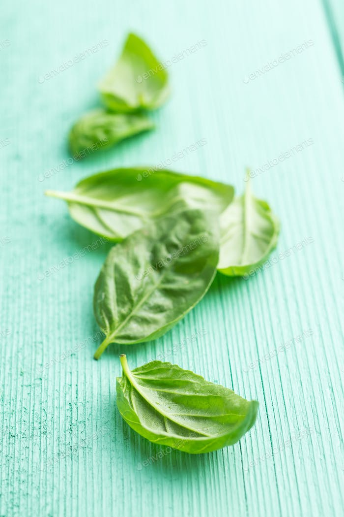 Green basil leaves.
