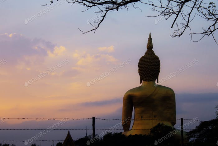 Buddha and tree with sunrise