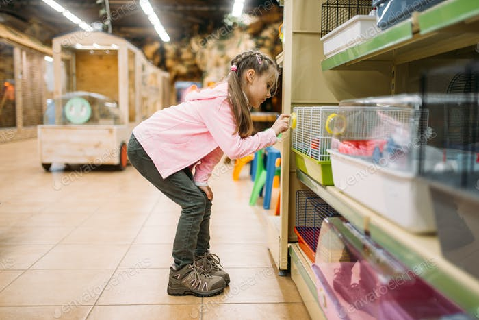 Little girl plays with hamster in pet shop