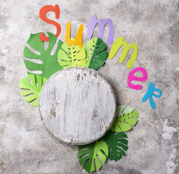 Summer background with monstera leaves