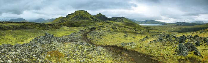 Volcanic landscape covered with moss