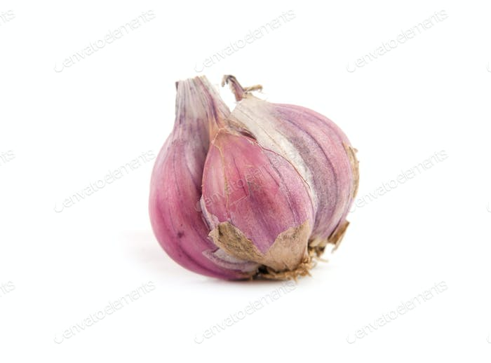 garlic is isolated