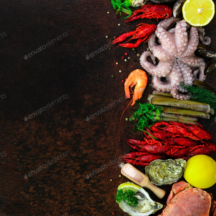 Seafood background - fresh mussels, molluscs, oysters, octopus, razor shells, shrimps, crab