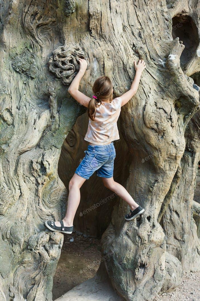 Girl child outdoors climb tree