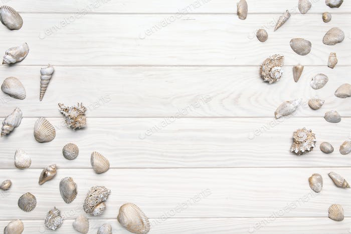 Summer background with white wooden table with many seashell