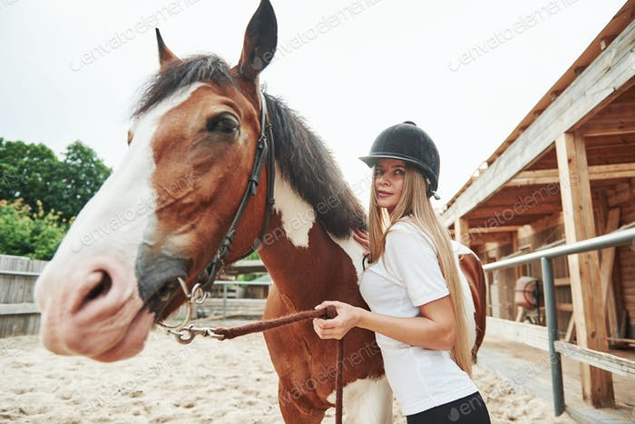Emotional blonde. Happy woman with her horse on the ranch at daytime