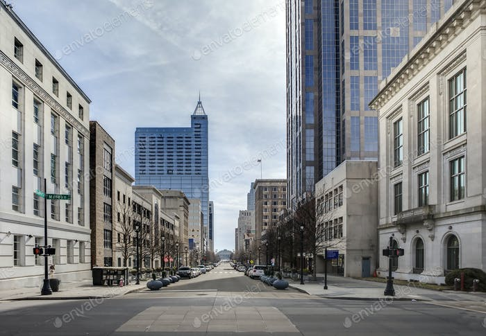view of downtown raleigh, north carolina