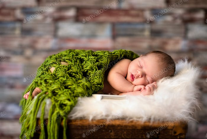 Newborn baby peacefully sleeping
