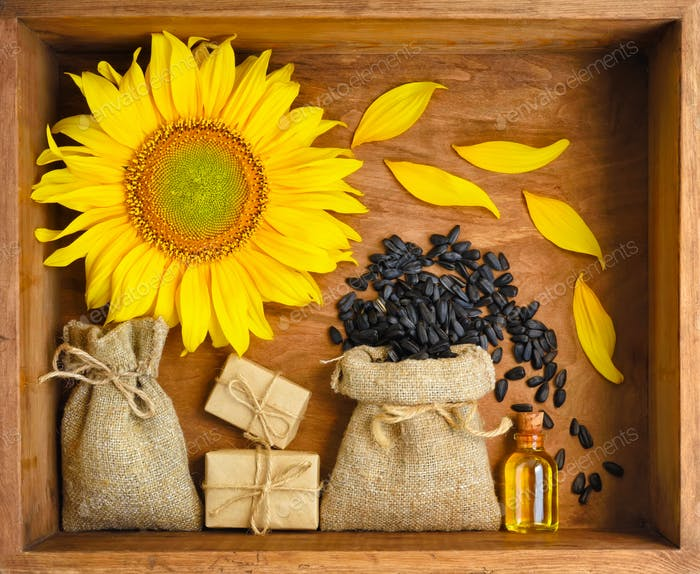 Beautiful composition with sunflower, oil and seeds in bags on w