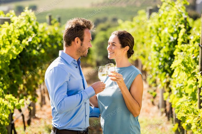 Young couple toasting wineglasses at vineyard