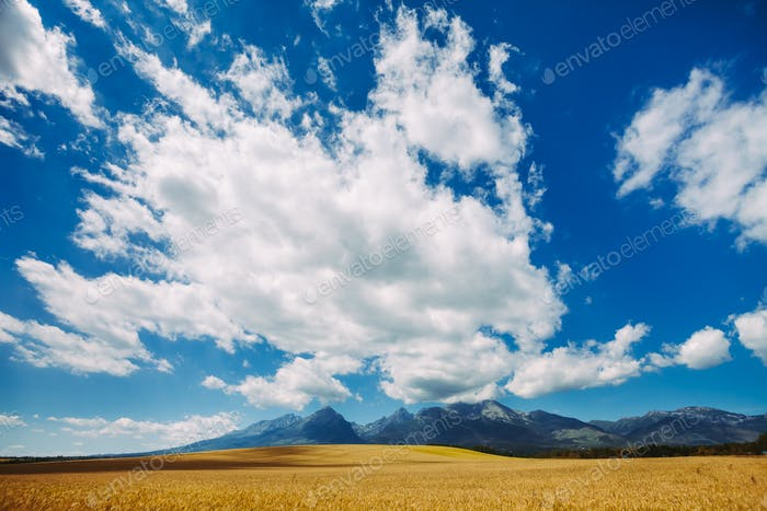White bright clouds in the clear blue sky. Tatras