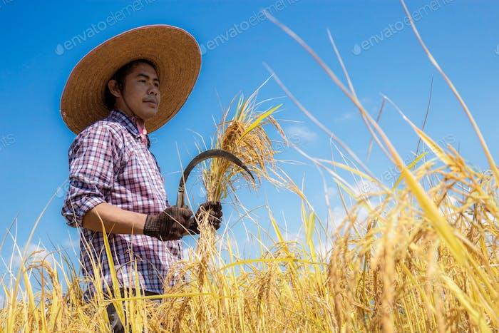 Farmer with a sickle at sky